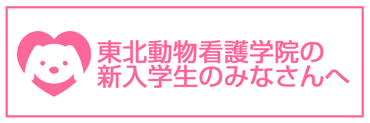 gakusei-pink